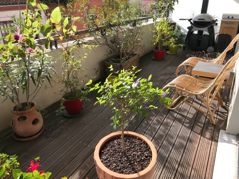 Appartement Standing Toulouse Centre Terrasse Immofavoris